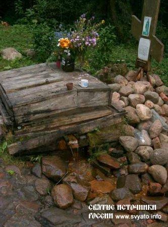 Родник, святой источник преподобного Иринарха Затворника у села Кондаково