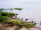 Река Буй