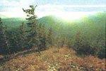 Характеристика вод некоторых источников и озер   Еравнинской котловины