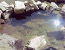 Гашовский колодец речки Оймурка