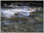 Горная река Шароаргун