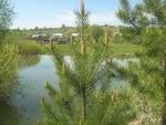 Река Аниш