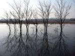Водная система Теньгушенского района