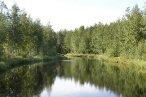Озеро Чистое село Три Озера