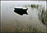 Озеро Щучье у деревни Степной Юрткуль