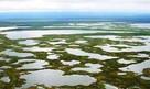 Усинское болото