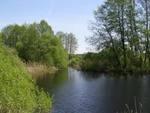 Водоёмы Крутихинского района