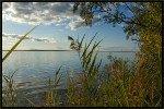Исток реки Касть