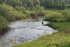 Водоёмы Пошехонского района