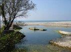 Исток реки Шепси
