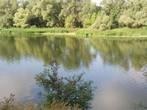 Исток реки Ермишь у деревни Пустошка