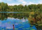 Водные ресурсы Приморского края