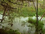 Водные ресурсы Берёзовского района