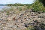 Озера ульчинского района