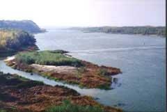 Река Чёрная Калитва