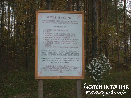 Родник, святой источник Казанской иконы Божией Матери урочище Акиньшино
