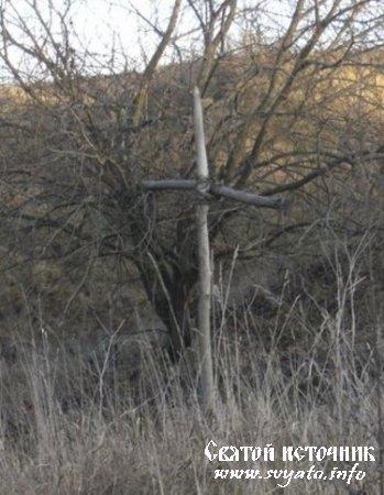Родник «Гремячий», святой источник у деревни Каменка