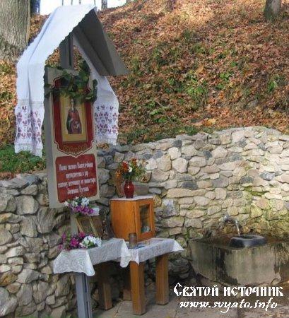 Родник, святой источник Пантелеймона Целителя у деревни Егнышевка
